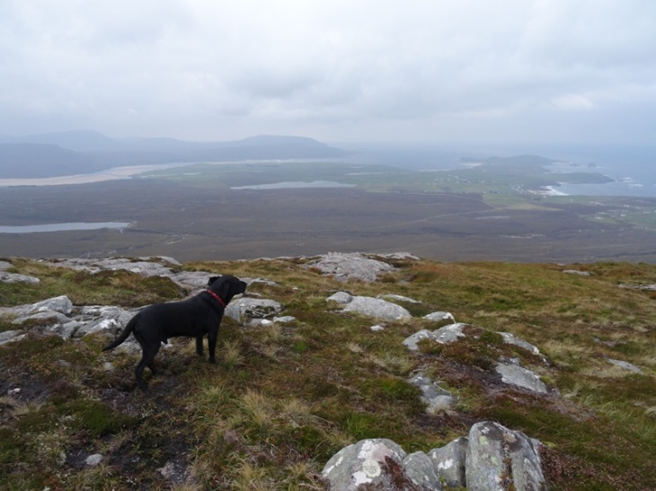 River, not too excited about the wind. Durness in the background.