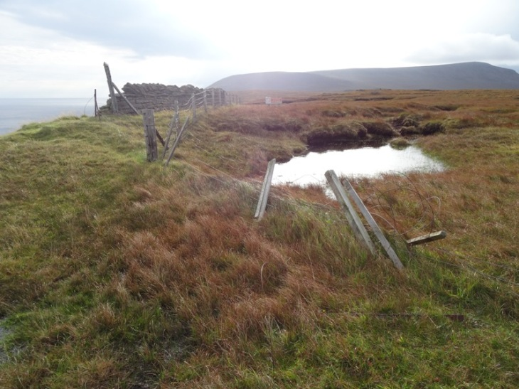 Right next to the cliffs is firm ground. A couple of metres away is . . . bog!