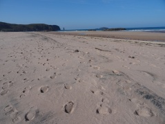 The long, wide expanse of beach that is Sandwood Bay. Lots of people here on this lovely day.