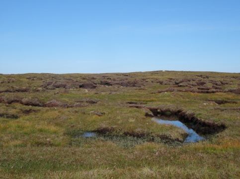 Beautiful bogs and peat hags
