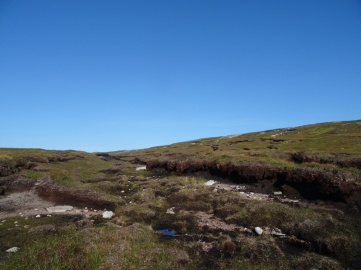 Sandy bogs. These were starting to dry out in the heat. Made walking through them a lot easier!