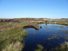 Beautiful example of peat bogs. Guess where Merlin's about to end up.